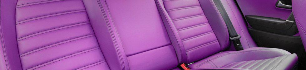 Tapiceria Coches Púrpura